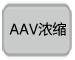 AAV浓缩