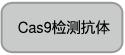 Cas9检测抗体