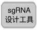 sgRNA设计工具