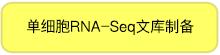 单细胞RNA-Seq文库制备