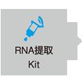 RNA提取
