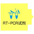RT-pcr试剂